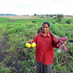 e-NAM benefits need to be utilized by odisha farmers